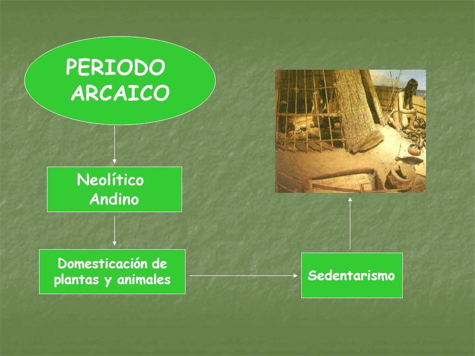 PERIODO ARCAICO Neolítico Andino Domesticación de plantas y animales Sedentarismo