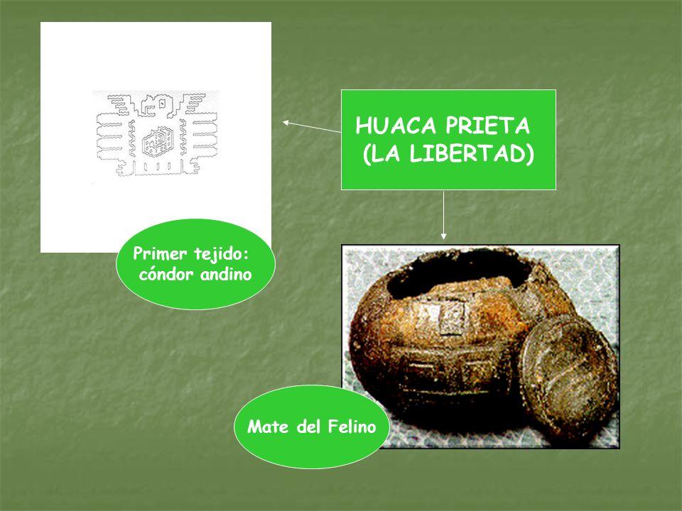 Primer tejido: cóndor andino Mate del Felino HUACA PRIETA (LA LIBERTAD)