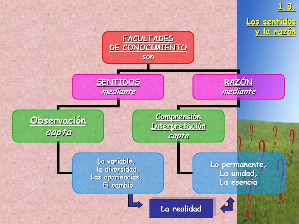FACULTADES DE CONOCIMIENTO son SENTIDOSmediante Observacióncapta Lo variable, la diversidad, Las apariencias, El cambio RAZÓNmediante ComprensiónInter