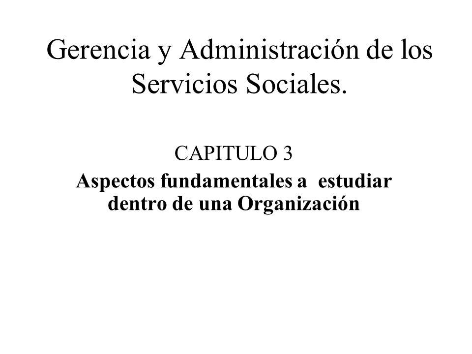 Gerencia y Administración de los Servicios Sociales. CAPITULO 3 Aspectos fundamentales a estudiar dentro de una Organización