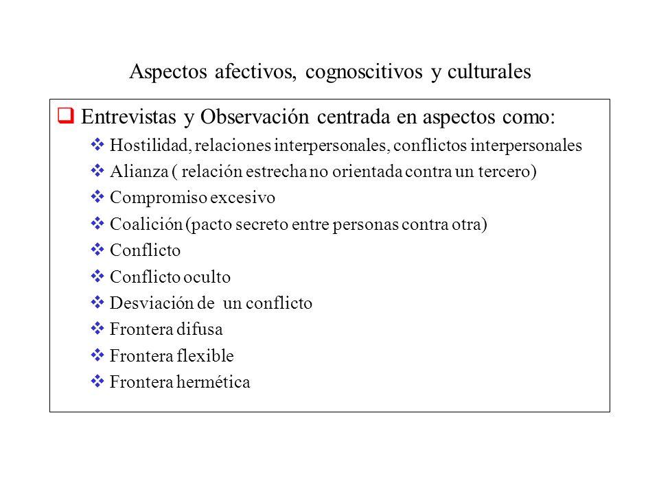 Aspectos afectivos, cognoscitivos y culturales Entrevistas y Observación centrada en aspectos como: Hostilidad, relaciones interpersonales, conflictos