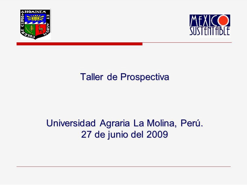 Taller de Prospectiva Universidad Agraria La Molina, Perú. 27 de junio del 2009