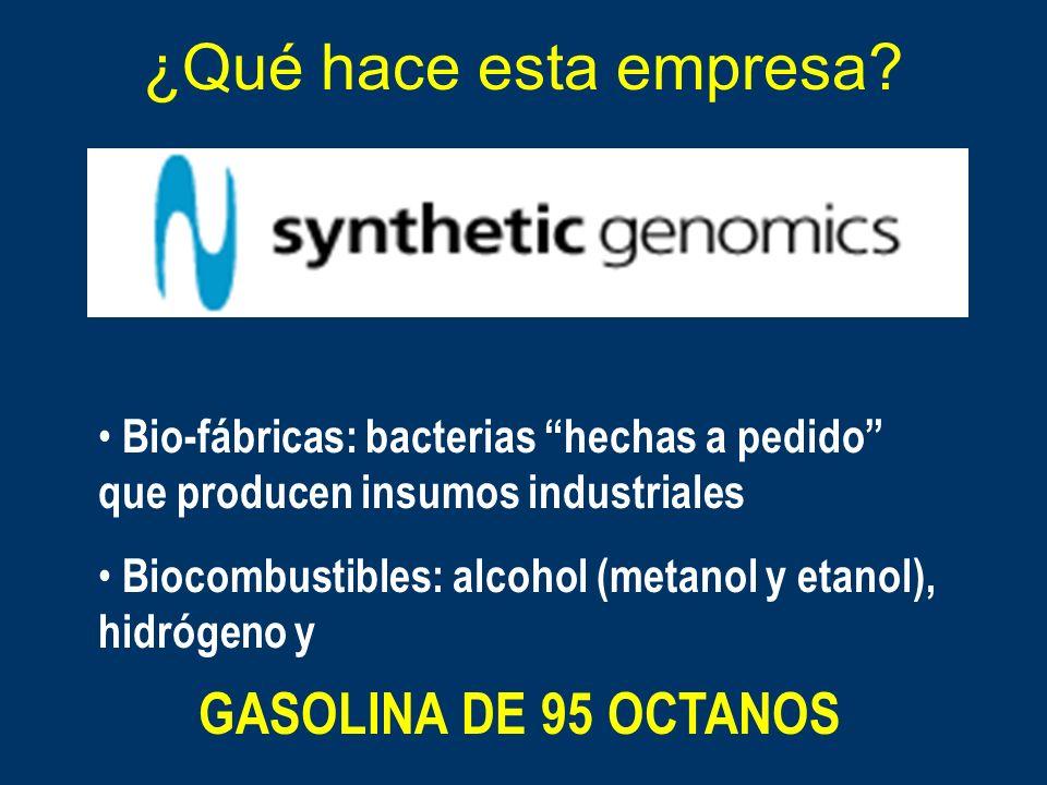 ¿Qué hace esta empresa? Bio-fábricas: bacterias hechas a pedido que producen insumos industriales Biocombustibles: alcohol (metanol y etanol), hidróge