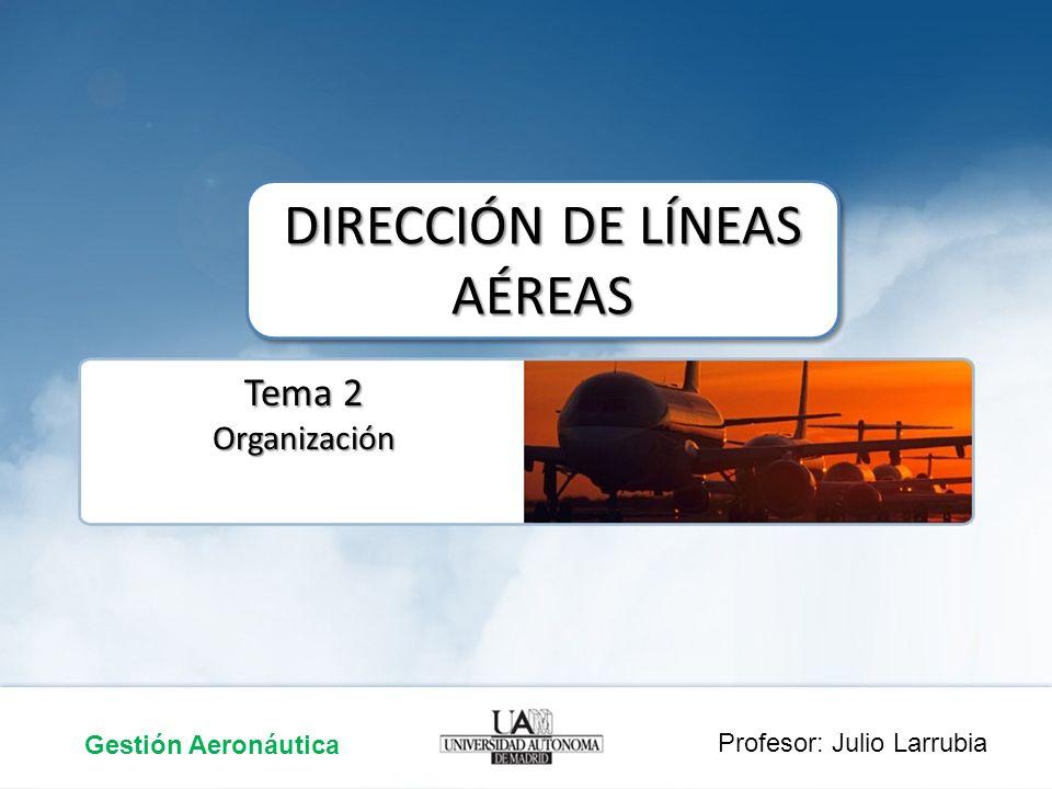 Tema 2 Organización DIRECCIÓN DE LÍNEAS AÉREAS Gestión Aeronáutica Profesor: Julio Larrubia