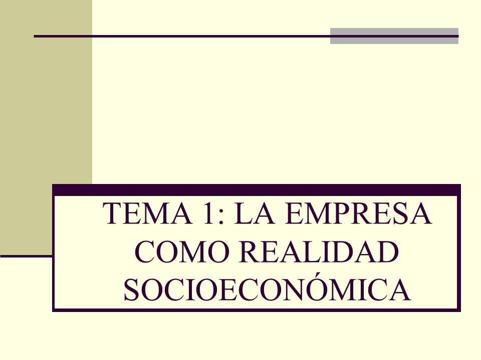 TEMA 1: LA EMPRESA COMO REALIDAD SOCIOECONÓMICA