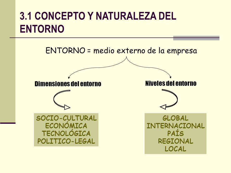3.1 CONCEPTO Y NATURALEZA DEL ENTORNO ENTORNO = medio externo de la empresa Dimensiones del entorno Niveles del entorno SOCIO-CULTURAL ECONÓMICA TECNO