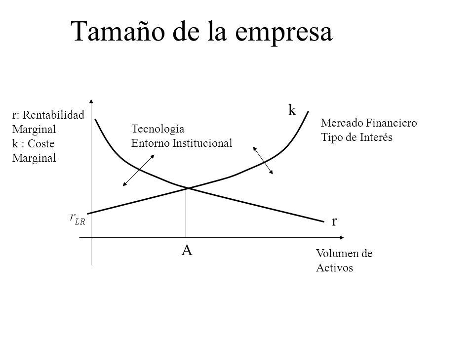 Tamaño de la empresa Volumen de Activos r: Rentabilidad Marginal k : Coste Marginal Tecnología Entorno Institucional Mercado Financiero Tipo de Interé