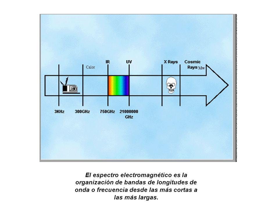 El espectro electromagnético es la organización de bandas de longitudes de onda o frecuencia desde las más cortas a las más largas. Mw Calor