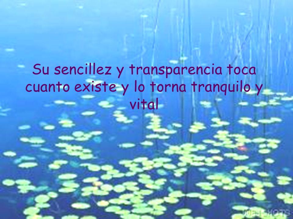 Su sencillez y transparencia toca cuanto existe y lo torna tranquilo y vital
