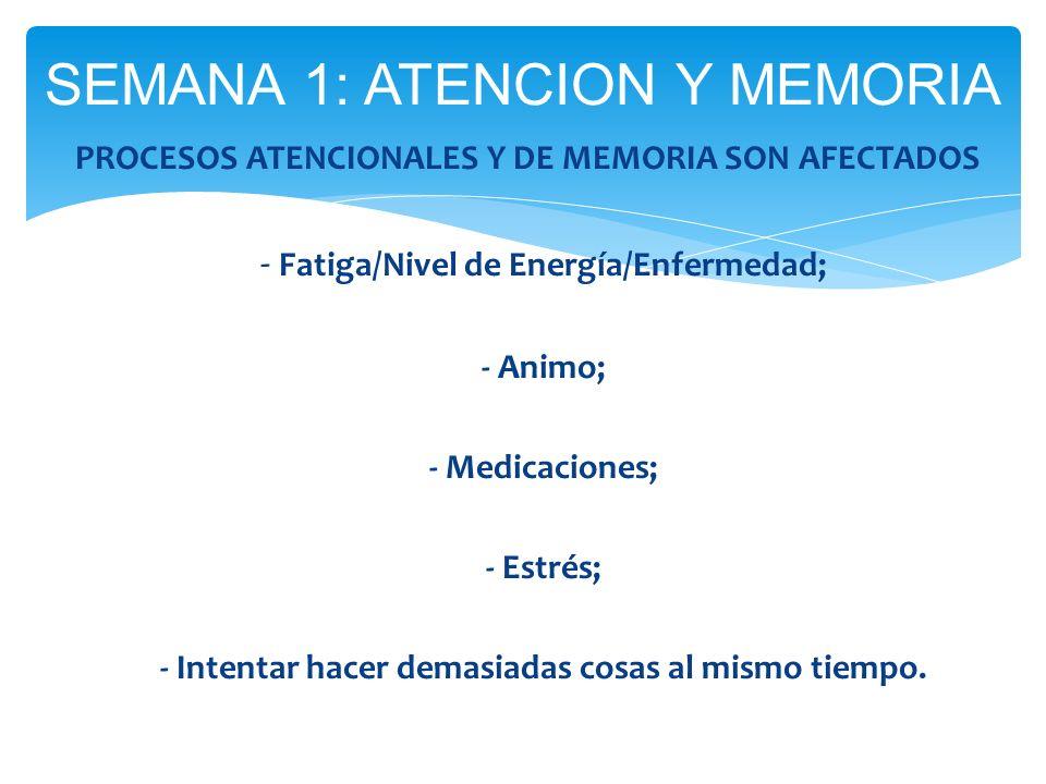 PROCESOS ATENCIONALES Y DE MEMORIA SON AFECTADOS - Fatiga/Nivel de Energía/Enfermedad; - Animo; - Medicaciones; - Estrés; - Intentar hacer demasiadas