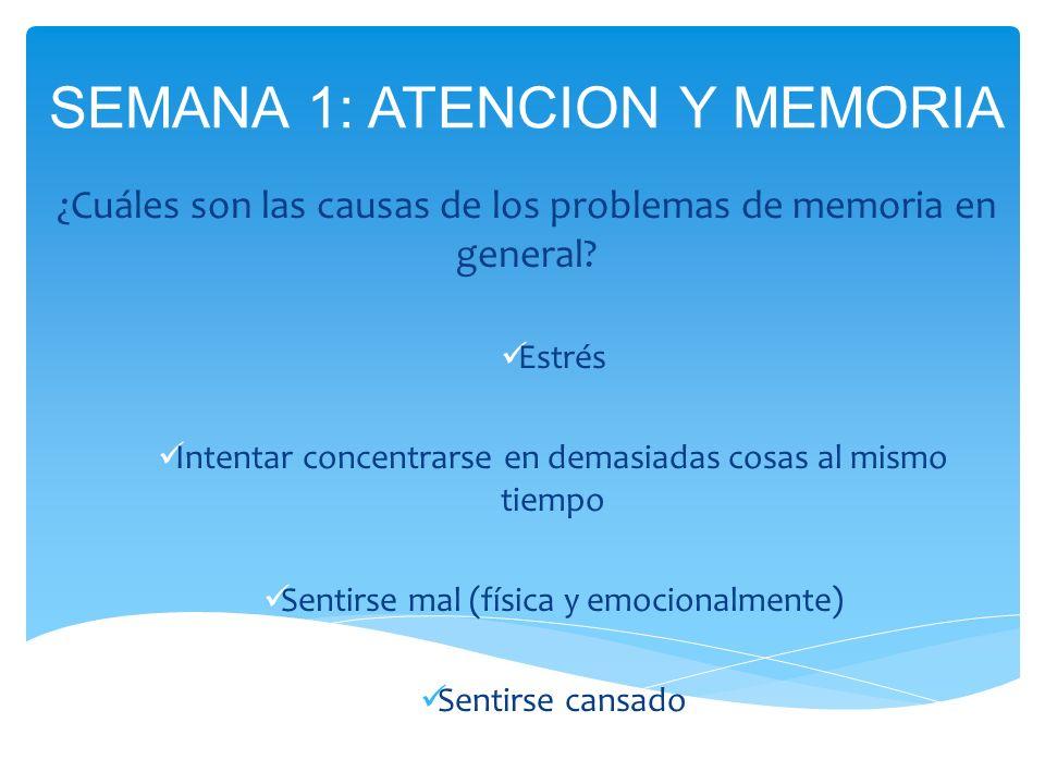 ¿Cuáles son las causas de los problemas de memoria en general? Estrés Intentar concentrarse en demasiadas cosas al mismo tiempo Sentirse mal (física y