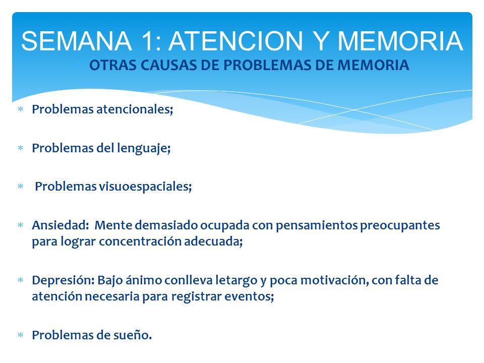 OTRAS CAUSAS DE PROBLEMAS DE MEMORIA Problemas atencionales; Problemas del lenguaje; Problemas visuoespaciales; Ansiedad: Mente demasiado ocupada con