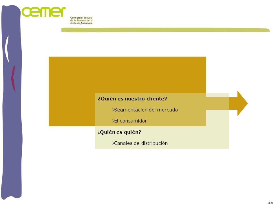¿Quién es nuestro cliente? Segmentación del mercado El consumidor ¿ Quién es quién? Canales de distribución 44