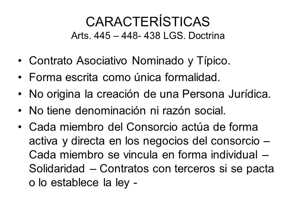 CARACTERÍSTICAS Arts. 445 – 448- 438 LGS. Doctrina Contrato Asociativo Nominado y Típico. Forma escrita como única formalidad. No origina la creación