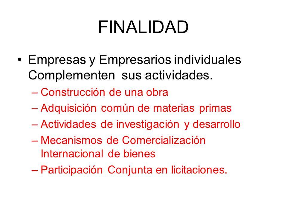 FINALIDAD Empresas y Empresarios individuales Complementen sus actividades. –Construcción de una obra –Adquisición común de materias primas –Actividad