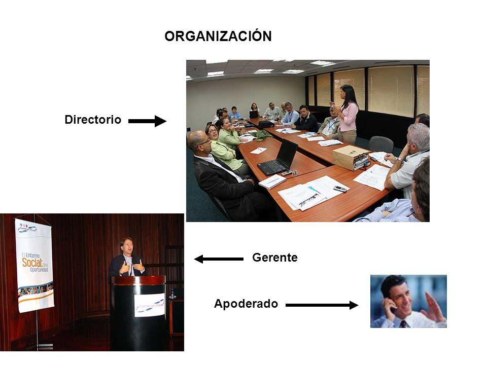 ORGANIZACIÓN Directorio Gerente Apoderado