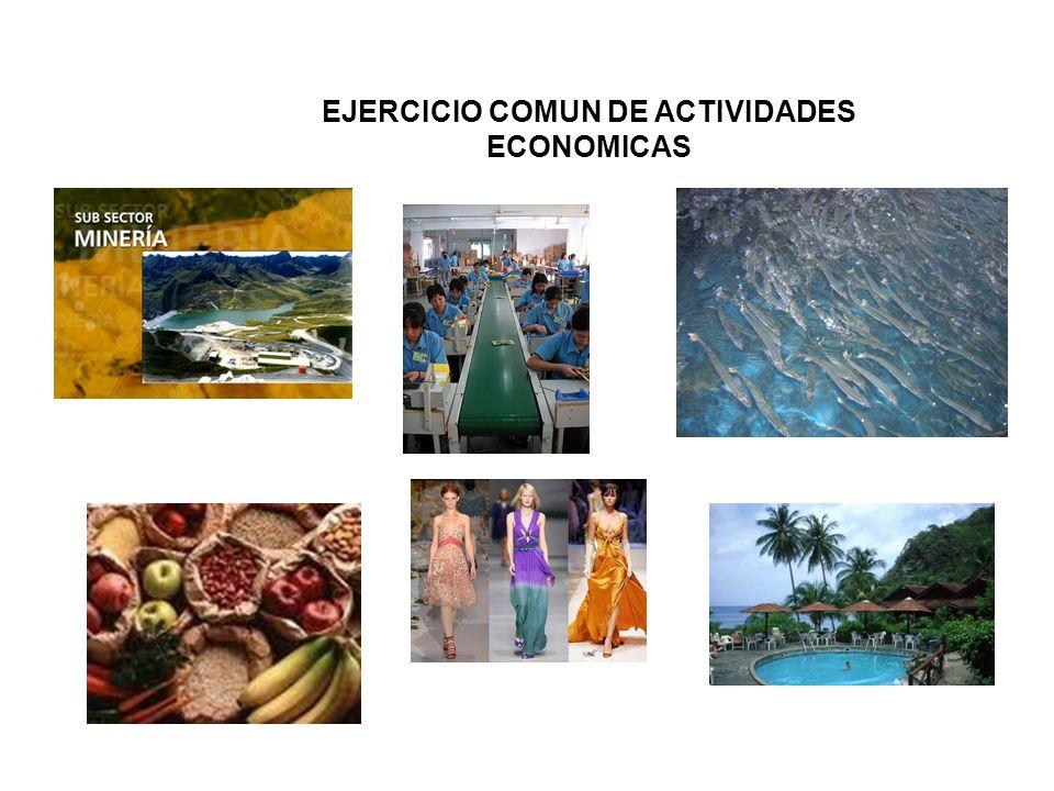 EJERCICIO COMUN DE ACTIVIDADES ECONOMICAS