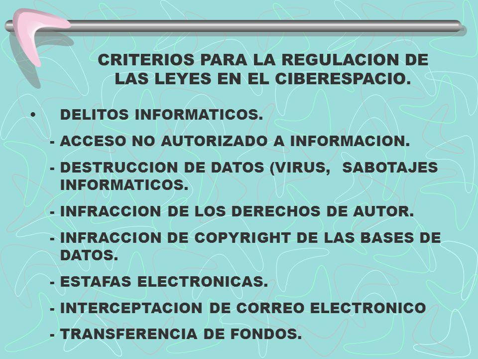 ...CRITERIOS PARA LA REGULACION DE LAS LEYES EN EL CIBERESPACIO.
