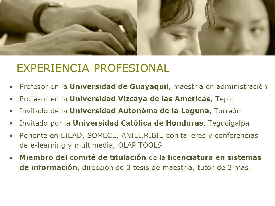 EXPERIENCIA PROFESIONAL Profesor en la Universidad de Guayaquil, maestría en administración Profesor en la Universidad Vizcaya de las Americas, Tepic