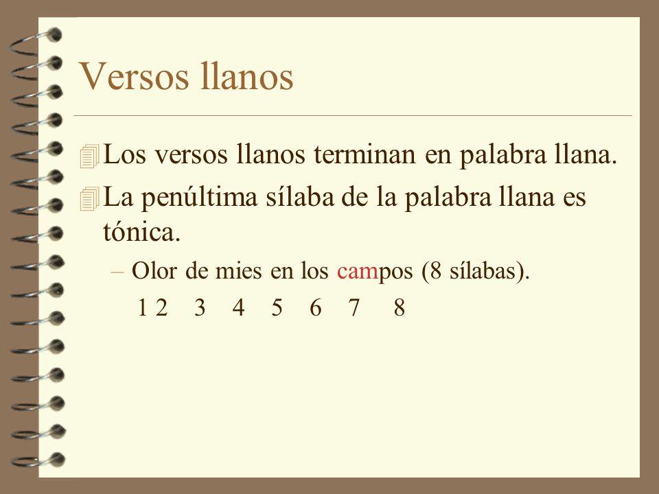 La versificación 4 Elementos esenciales del verso español son el número de sílabas y el acento rítmico, accesorios, la cesura, la pausa y la rima.