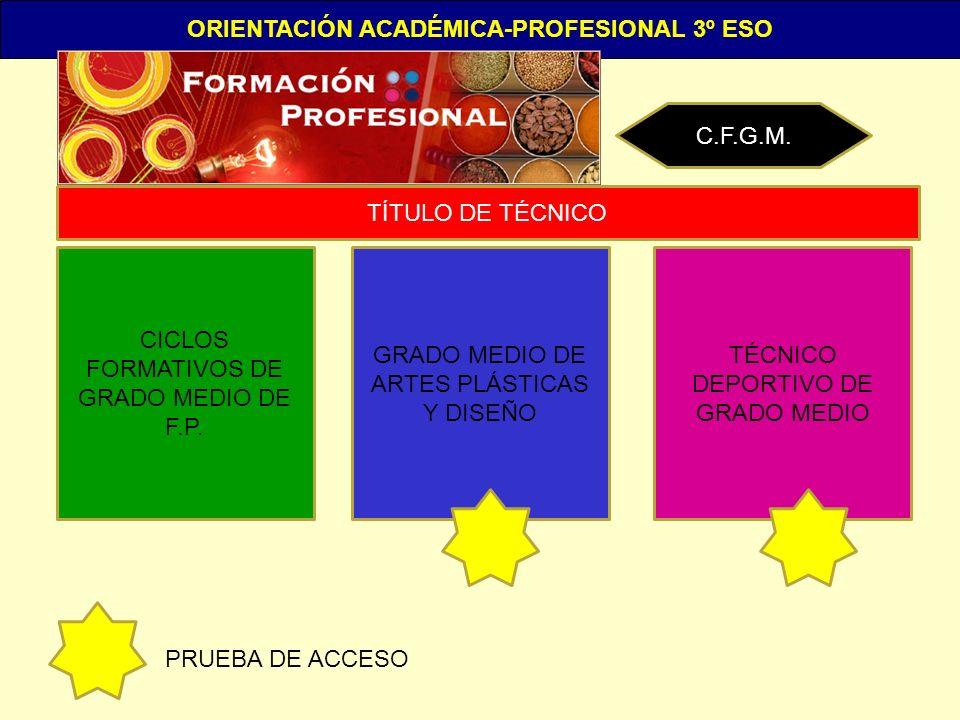 ORIENTACIÓN ACADÉMICA-PROFESIONAL 3º ESO C.F.G.M. CICLOS FORMATIVOS DE GRADO MEDIO DE F.P. GRADO MEDIO DE ARTES PLÁSTICAS Y DISEÑO TÉCNICO DEPORTIVO D