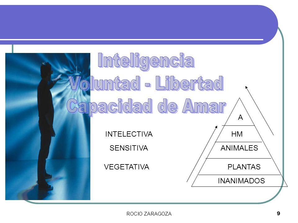 ROCIO ZARAGOZA9 INANIMADOS PLANTAS ANIMALES HM VEGETATIVA SENSITIVA INTELECTIVA A