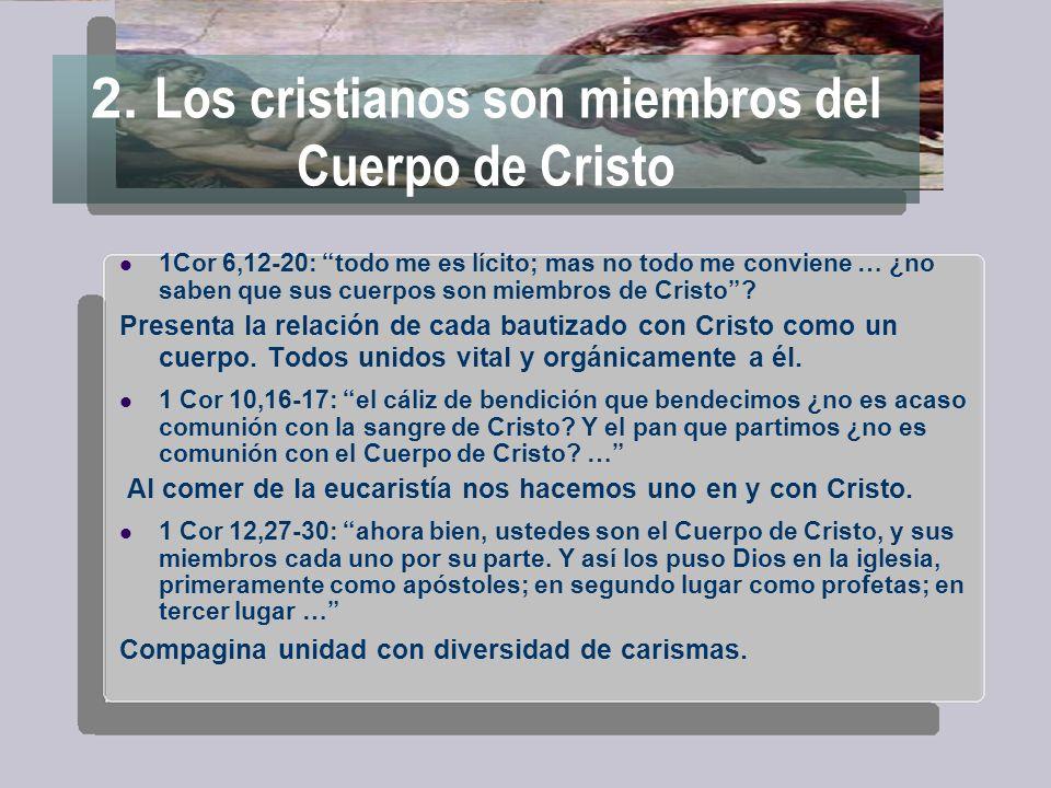 2. Los cristianos son miembros del Cuerpo de Cristo 1Cor 6,12-20: todo me es lícito; mas no todo me conviene … ¿no saben que sus cuerpos son miembros