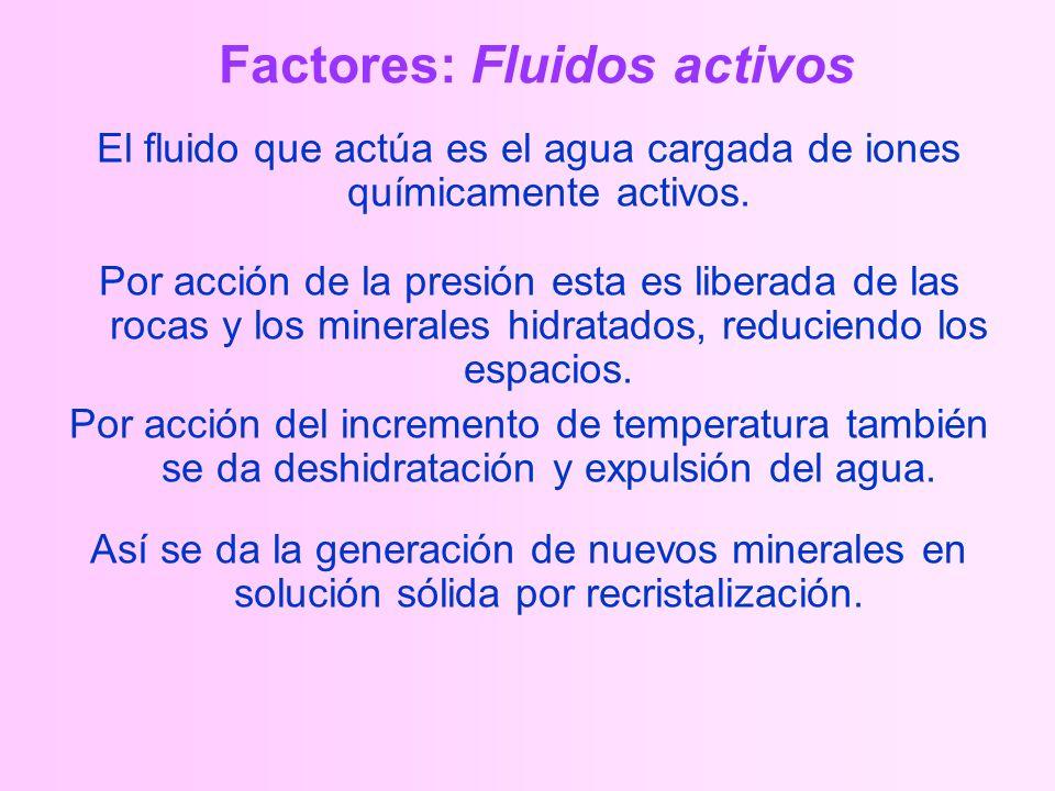 Factores: Fluidos activos El fluido que actúa es el agua cargada de iones químicamente activos.