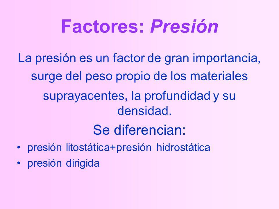 Factores: Presión La presión es un factor de gran importancia, surge del peso propio de los materiales suprayacentes, la profundidad y su densidad.
