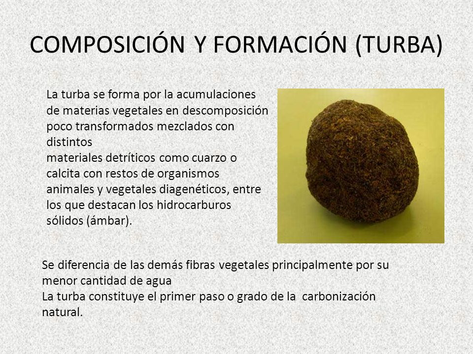 COMPOSICIÓN Y FORMACIÓN (TURBA) La turba se forma por la acumulaciones de materias vegetales en descomposición poco transformados mezclados con distin