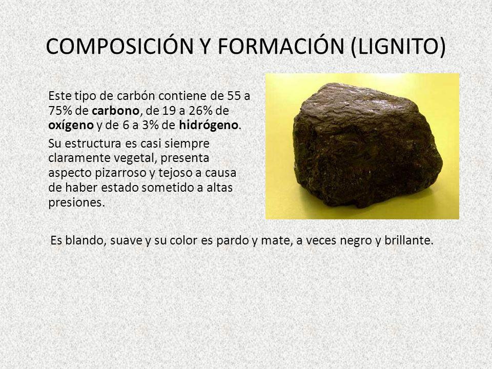 COMPOSICIÓN Y FORMACIÓN (LIGNITO) Este tipo de carbón contiene de 55 a 75% de carbono, de 19 a 26% de oxígeno y de 6 a 3% de hidrógeno. Su estructura