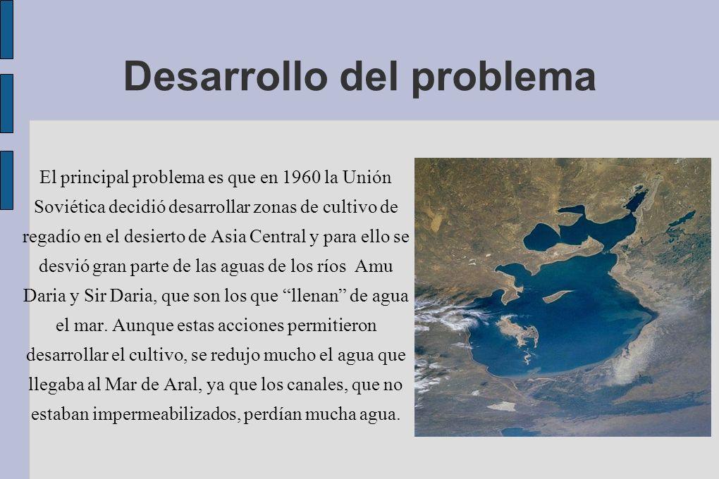 Desarrollo del problema El principal problema es que en 1960 la Unión Soviética decidió desarrollar zonas de cultivo de regadío en el desierto de Asia
