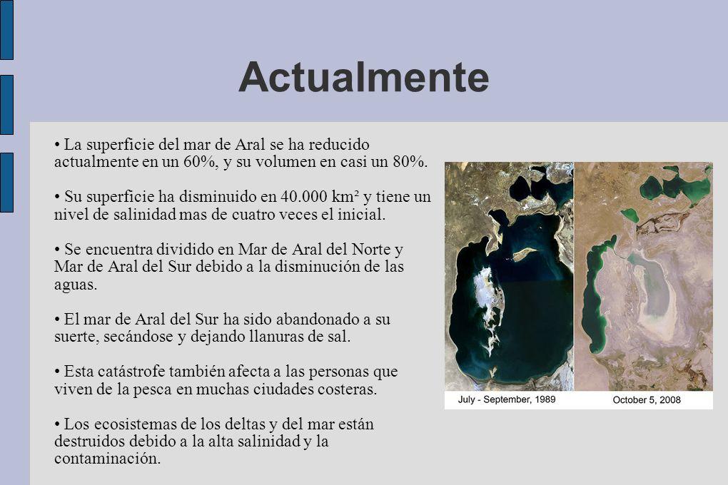 Actualmente La superficie del mar de Aral se ha reducido actualmente en un 60%, y su volumen en casi un 80%. Su superficie ha disminuido en 40.000 km²