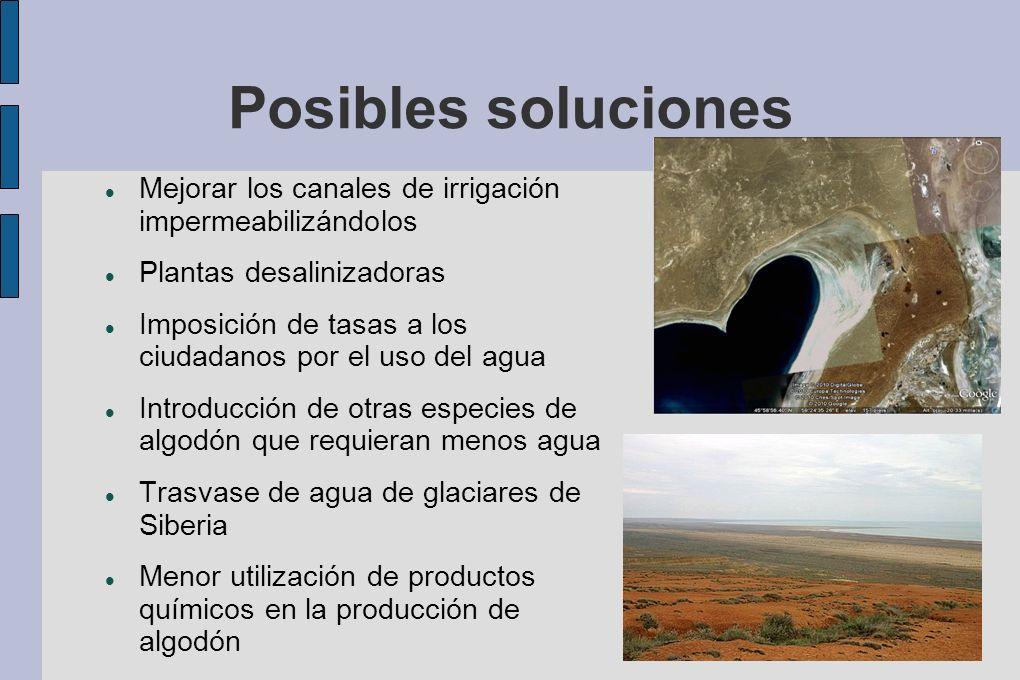 Posibles soluciones Mejorar los canales de irrigación impermeabilizándolos Plantas desalinizadoras Imposición de tasas a los ciudadanos por el uso del