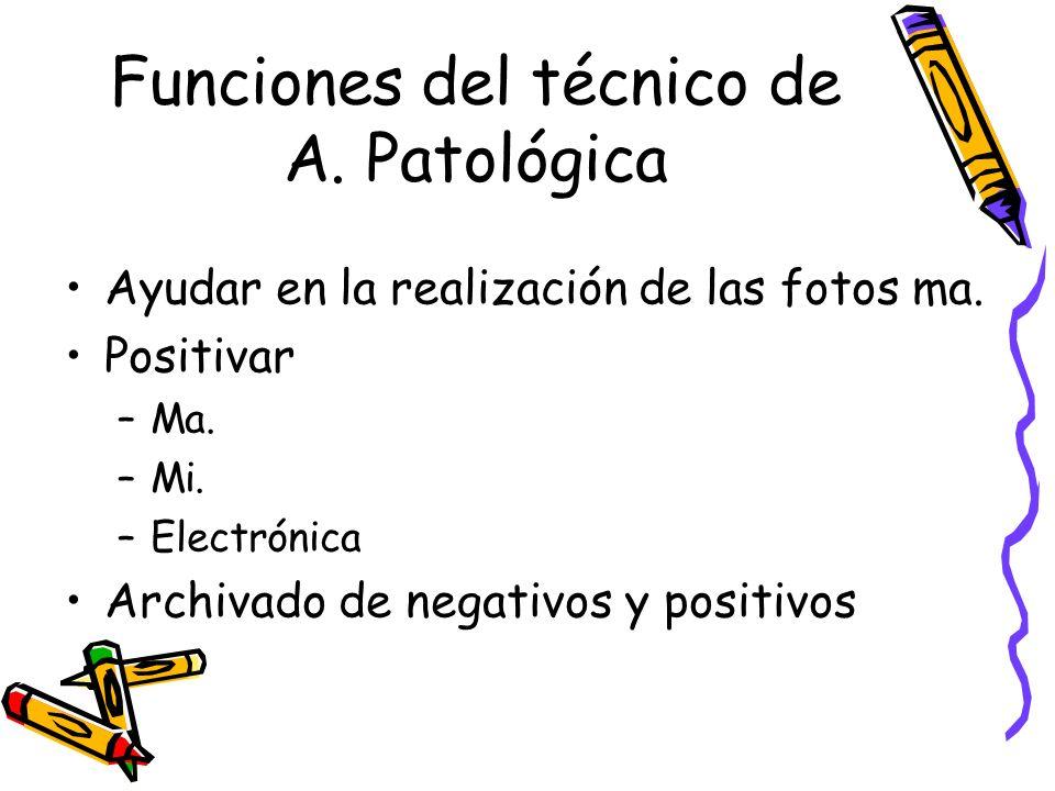 Funciones del técnico de A.Patológica Ayudar en la realización de las fotos ma.