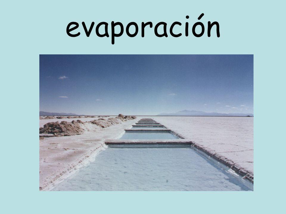 evaporación Evaporador en vacío