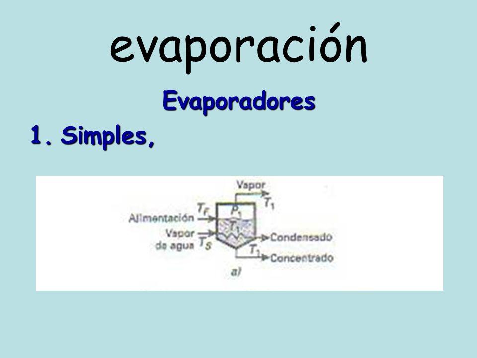 evaporación Evaporadores de circulación natural E.