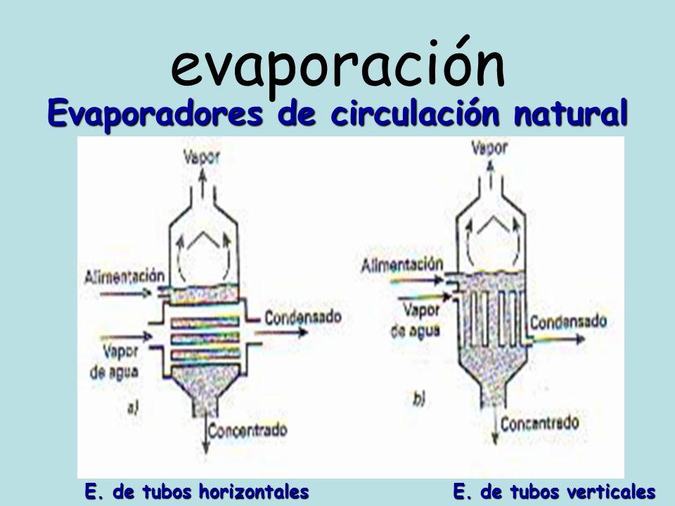 evaporación Evaporador de circulación forzada