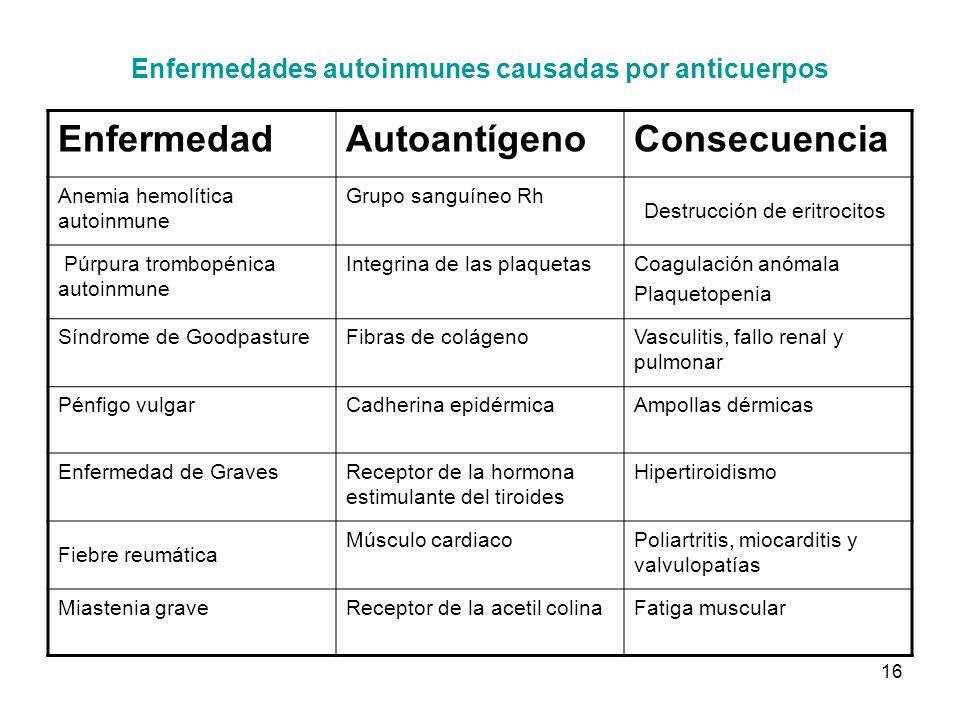 16 Enfermedades autoinmunes causadas por anticuerpos EnfermedadAutoantígenoConsecuencia Anemia hemolítica autoinmune Grupo sanguíneo Rh Destrucción de
