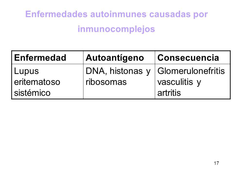 17 Enfermedades autoinmunes causadas por inmunocomplejos EnfermedadAutoantígenoConsecuencia Lupus eritematoso sistémico DNA, histonas y ribosomas Glom