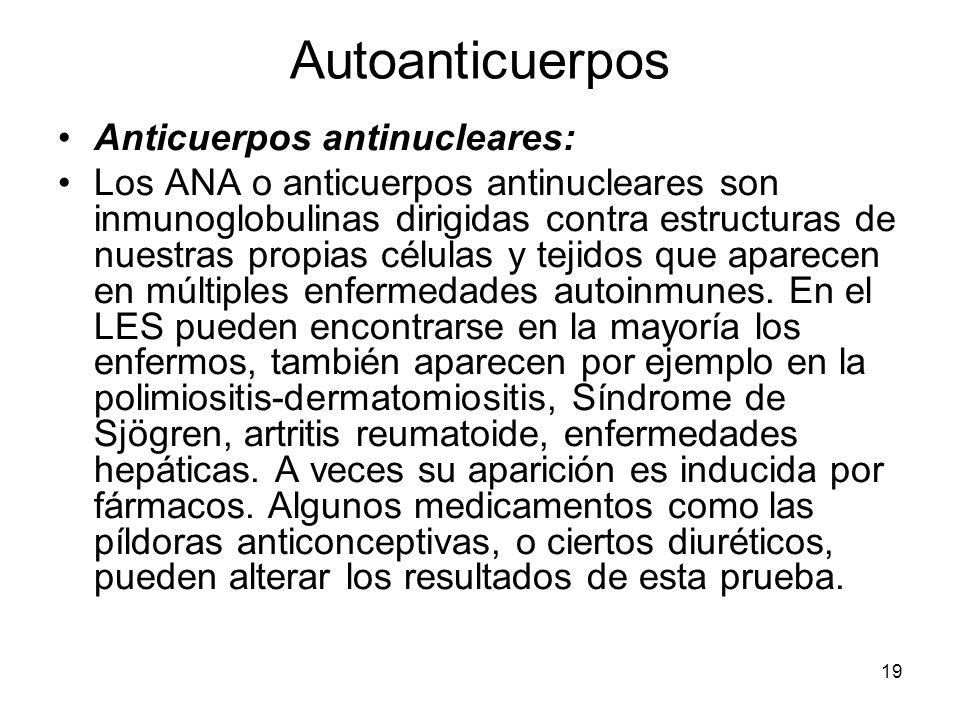19 Autoanticuerpos Anticuerpos antinucleares: Los ANA o anticuerpos antinucleares son inmunoglobulinas dirigidas contra estructuras de nuestras propia