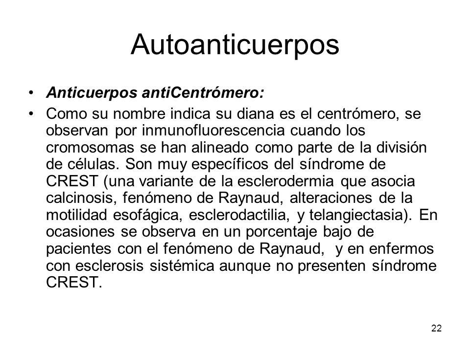 22 Autoanticuerpos Anticuerpos antiCentrómero: Como su nombre indica su diana es el centrómero, se observan por inmunofluorescencia cuando los cromoso