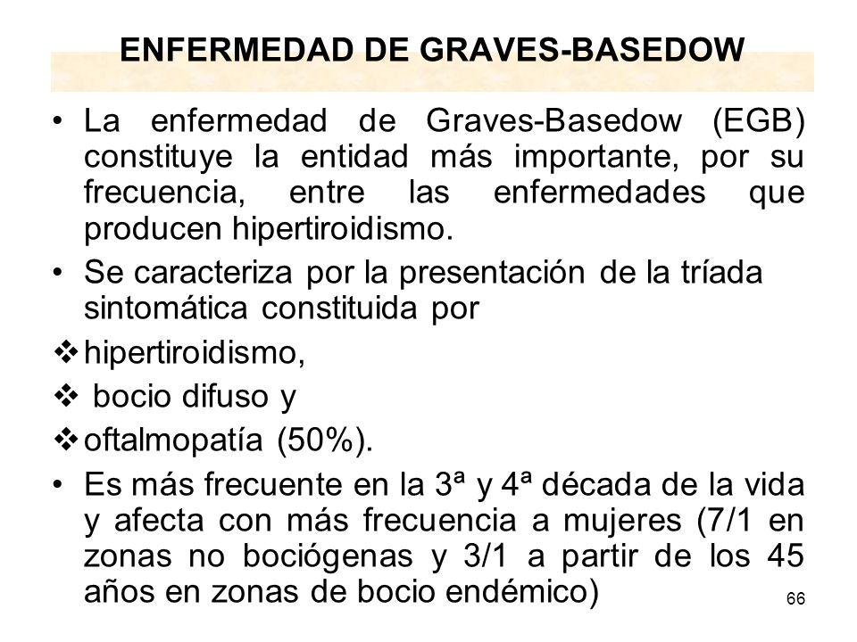 66 ENFERMEDAD DE GRAVES-BASEDOW La enfermedad de Graves-Basedow (EGB) constituye la entidad más importante, por su frecuencia, entre las enfermedades