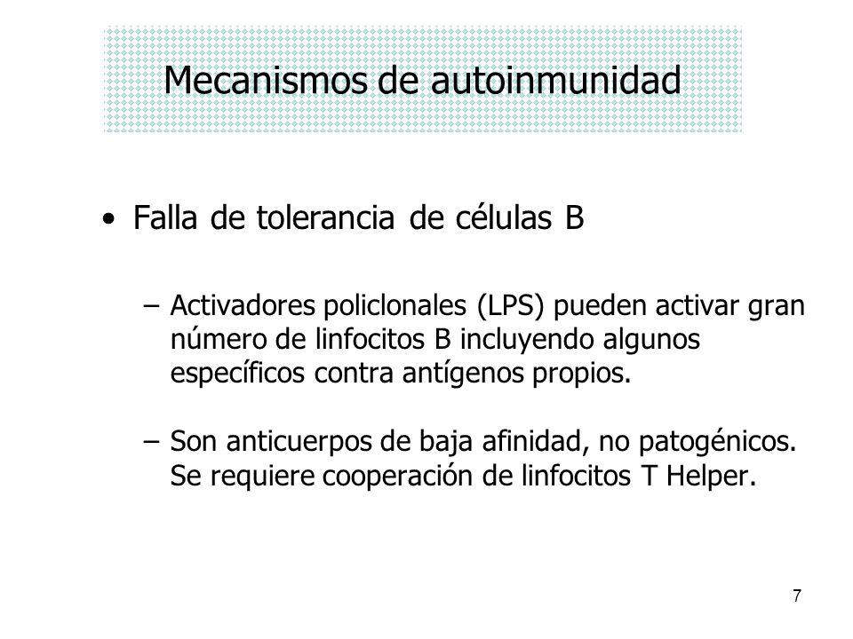 7 Mecanismos de autoinmunidad Falla de tolerancia de células B –Activadores policlonales (LPS) pueden activar gran número de linfocitos B incluyendo a