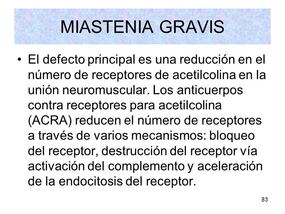 83 MIASTENIA GRAVIS El defecto principal es una reducción en el número de receptores de acetilcolina en la unión neuromuscular. Los anticuerpos contra