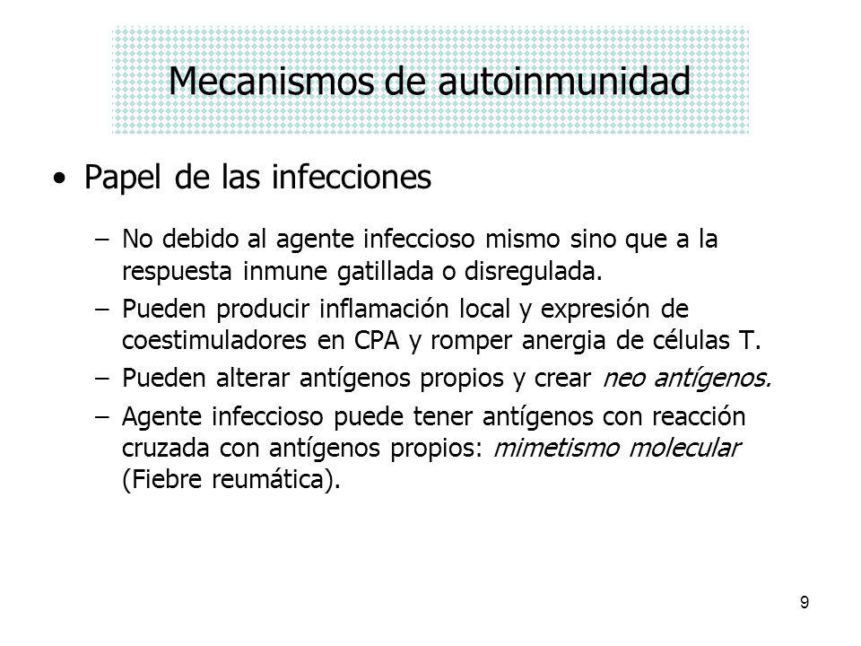 9 Mecanismos de autoinmunidad Papel de las infecciones –No debido al agente infeccioso mismo sino que a la respuesta inmune gatillada o disregulada. –