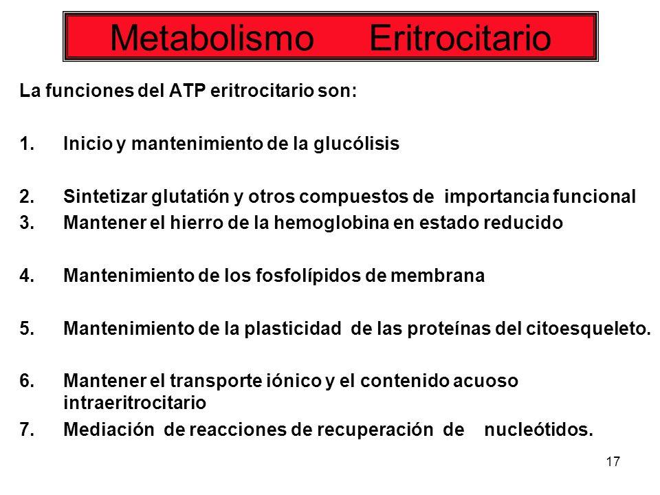 17 La funciones del ATP eritrocitario son: 1.Inicio y mantenimiento de la glucólisis 2.Sintetizar glutatión y otros compuestos de importancia funciona