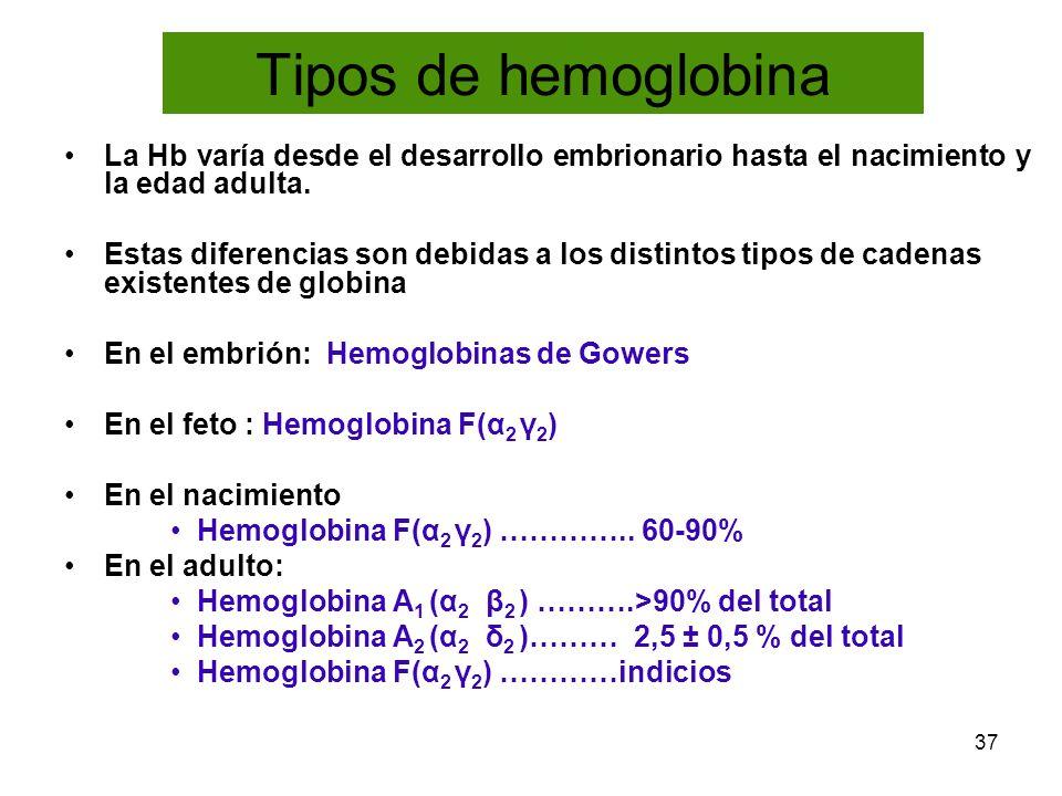 37 Tipos de hemoglobina La Hb varía desde el desarrollo embrionario hasta el nacimiento y la edad adulta. Estas diferencias son debidas a los distinto