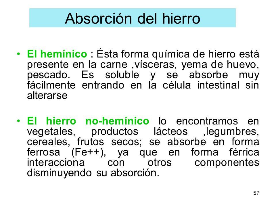 57 El hemínico : Ésta forma química de hierro está presente en la carne,vísceras, yema de huevo, pescado. Es soluble y se absorbe muy fácilmente entra