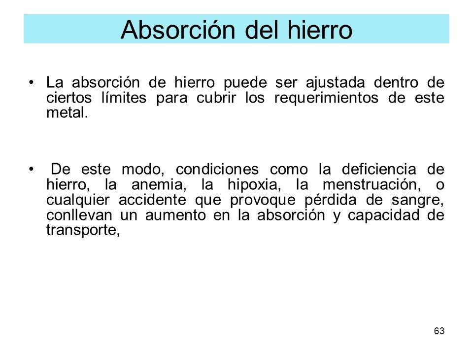 63 La absorción de hierro puede ser ajustada dentro de ciertos límites para cubrir los requerimientos de este metal. De este modo, condiciones como la